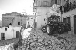 DSCF2615